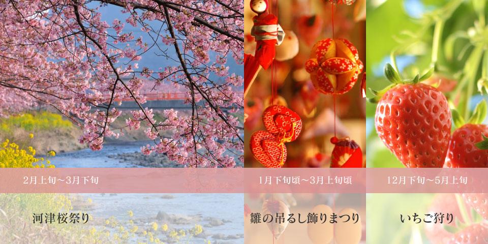 sightsee_1-3
