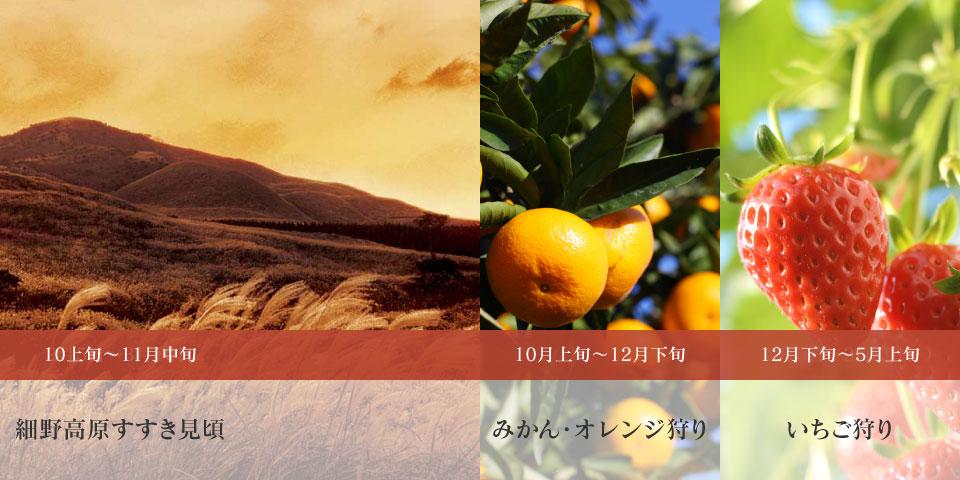 sightsee_10-12